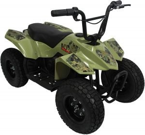 The Pulse Performance Products ATV Quad - Childrens Electric 4 Wheeler